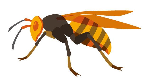 害虫の種類と被害についてイメージ3