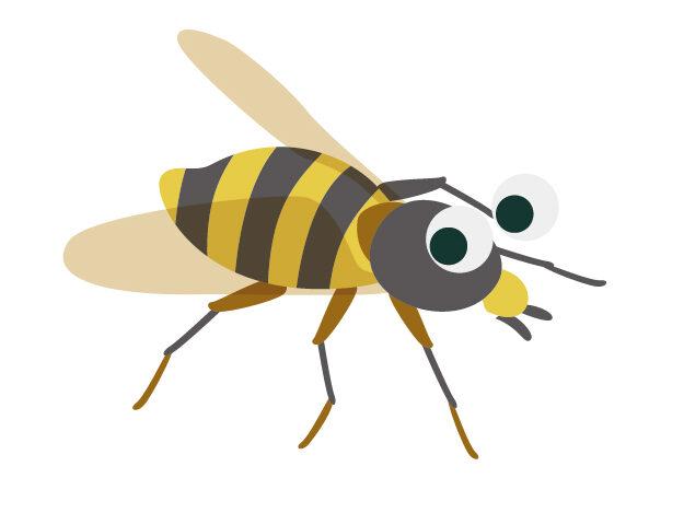 害虫の種類と被害についてイメージ2